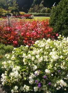 Butchard Gardens, Victoria,BC