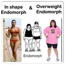 The endomorph body type is more likely to hold excess weight.
