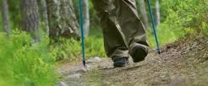 Walking sticks ease the pain.